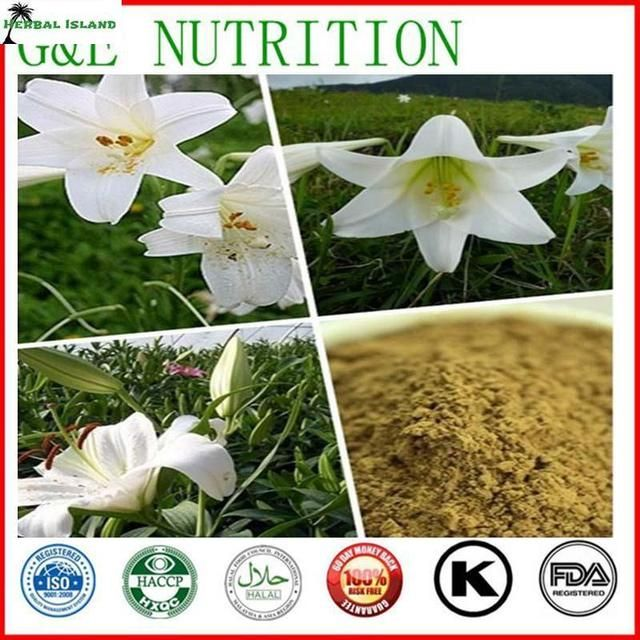 Low Price Organic Lily Bulb Extract Powder