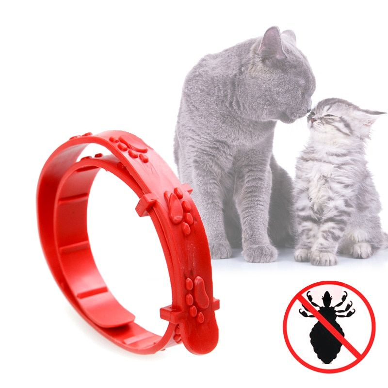 Leash For Cats Insect Repellent Flea Collar Cat Collar Flea Repellent Dog Pest Killing Flea Circle Cat Tick Collar Cat's Ring