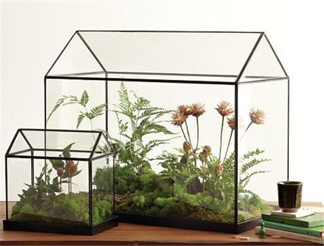 Cool Mini Handmade Tabletop Glass Green Houses,Small Arched Greenhouse Wardian Case Miniature Landscape Garden Terrarium