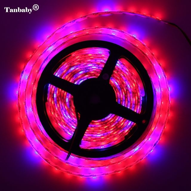 5M/lot LED Grow Lights DC12V Growing LED Strip Tape Light 5050 IP65 LED Plant Growth Lamps for Greenhouse Hydroponic plant
