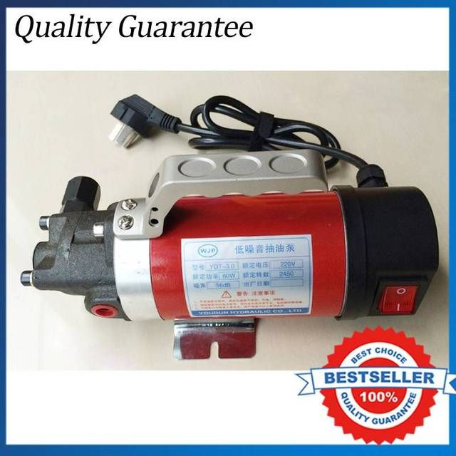 Hot Sale 220V Gear Oil Pump 2.5L/min Car Oil Exchange Pump