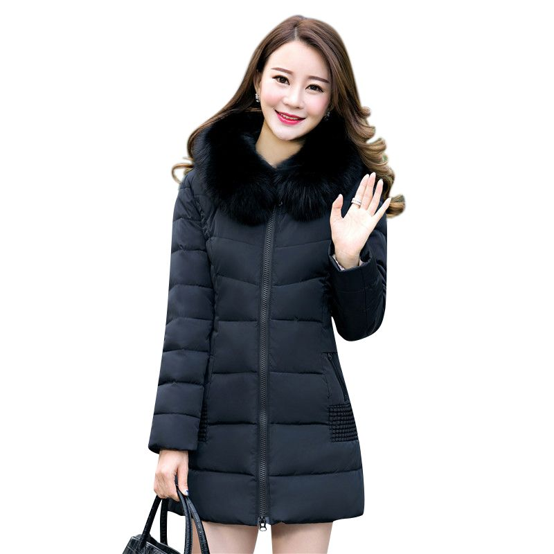 2018 Women Winter Jackets Coats Embroidered Thick Warm Hooded  Duck Down Padded Parkas For Women's Winter  Fur Jacket