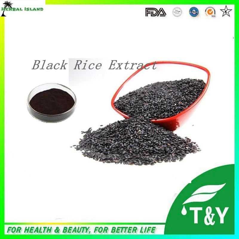 Black Rice P.E./Black Rice Extract Powder with Natural Anthocyanins 300g/lot