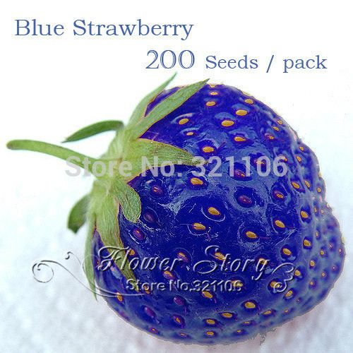 200 Blue Strawberry Seeds 100% Genuine  Sweet & Juicy  - rich aroma ,DIY Home Garden  fruit  plant seeds