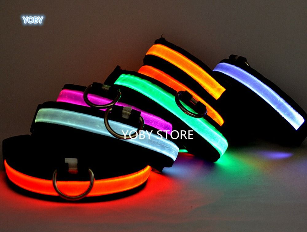 Pet Shop Pet Dog Collars For Dogs Pets Cats Glow Led Collars, Productos Para Mascotas Cat Collar Dog Coller Led