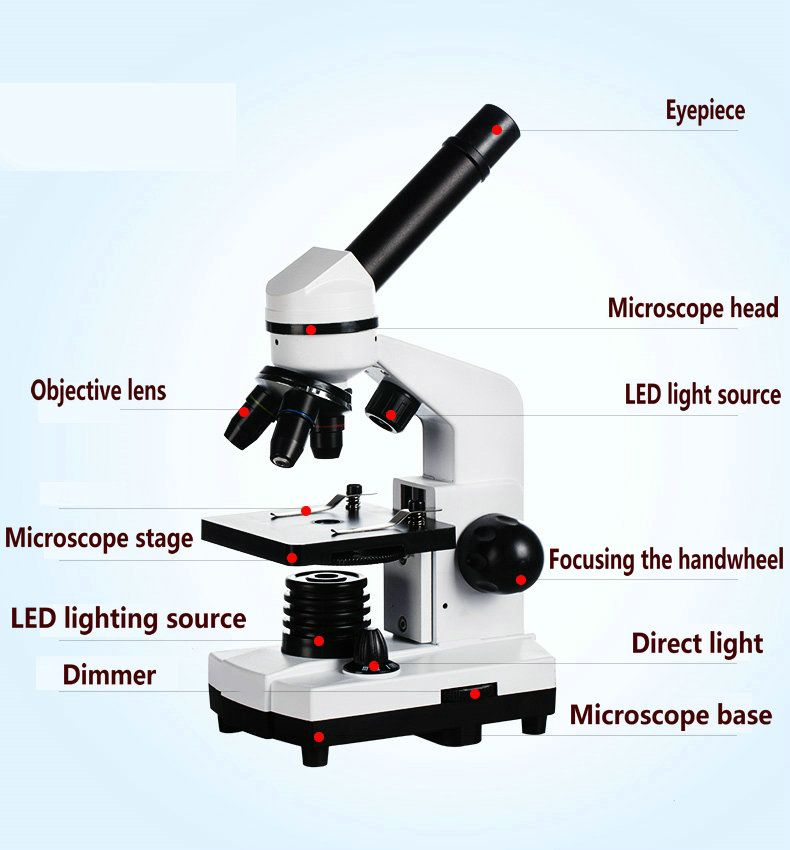 NEW Biological Microscope 1600X Magnification Student Microscope Science experiment + 2.0MP COMS USB Electronic Eyepiece