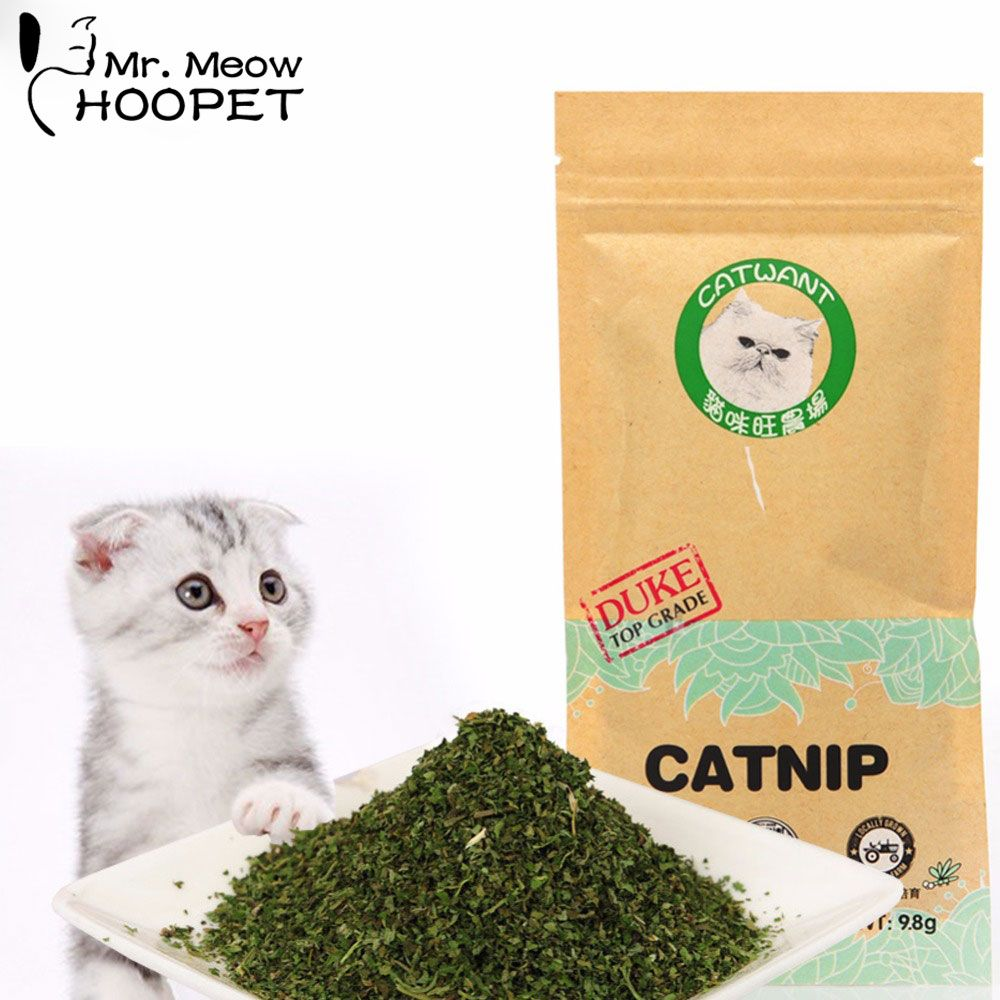 Hoopet Cat Toy Mint Natural Organic Premium Catnip Cat Mint Menthol Flavor Cat Supplies Goods Toys for Cats