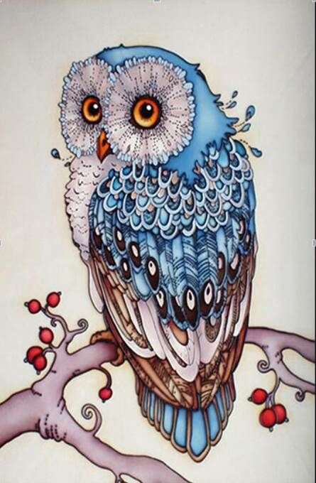 5d diy diamond painting owl embroidery crystals point de croix diamond painting animal rhinestones embroidery broderie diamant