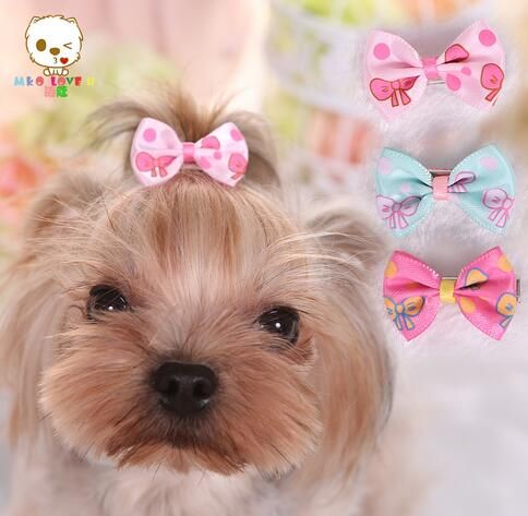 Pet accessories Tactic Mai Kou Yorkshire VIP pet dog and cat bowknot barrette hair accessories printing 120pcs