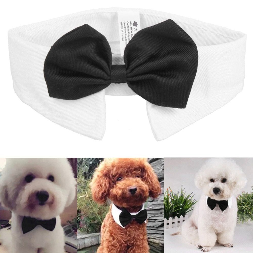 Fashion Gentleman Dog Bow Ties Pet Bow ties Adjustable Dog Cat Neckties Bow Butterfly Tie Necktie Bow tie Collar Pet Accessorie