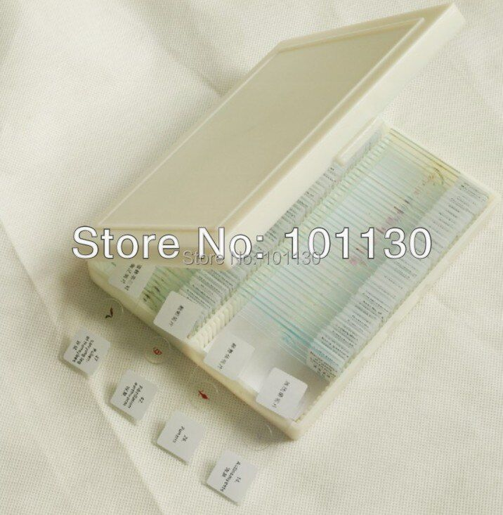 91 Pcs Prepared Glass Microscope Slides Professional Biologic Slides with Box for Biological Microscope science learning