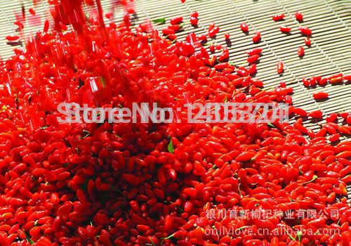 Free Shippping 1000g Chinese dried Goji Berries for sex, Goji berry(Wolfberry) herbal Tea green food for health