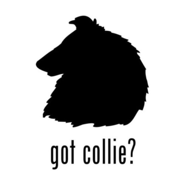 10cm*14cm Animal Dog Collie Got To Remind Car Tail Stickers Car Accessories C5-0459