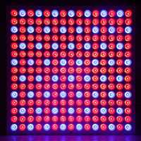 45 W espectro completo llevado crece la luz roja azul luz para hidroponía y semillas plantas de interior invernadero phytolamp led lámpara
