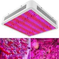 800 W 800 LED espectro completo llevado crece la luz hidroponía planta semillas crecimiento floración frutas crecimiento interior iluminación