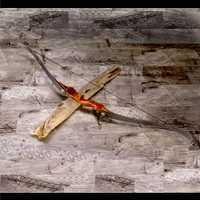 DERRIBO DE MADERA negro chino de Tiro con Arco recurvo arco y flecha deporte para venta de Tiro con Arco ballesta caza Honda