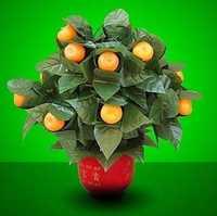 20 naranjas florecientes-Control remoto/magia de escena, truco de magia, mentalismo, ilusión, magia del partido espectáculo, boda