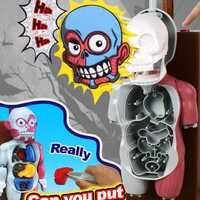 Simulación 3D rompecabezas montado Scary cuerpo modelo Halloween Tricky broma juguete 998