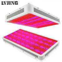 300 W 600 W 800 W 1200 W 1600 W LED à spectre complet Élèvent La Lumière Lampes Pour Plante À Fleurs Veg Système Hydroponique Grandir/Bloom Tente
