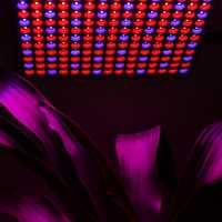 45 W SMD 2835 LED grow light panel lámpara de interior hidroponía planta vegetal de la flor con 225 LED de espectro completo LED crece la luz