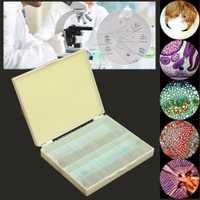Muestras de enseñanza de la etiqueta inglesa de la escuela y laboratorio de muestras de cristal del microscopio de ciencia básica biológico preparado 100 unids