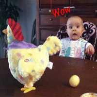 Sorpresa de estrés Gadget juegos interactivos de interior o al aire libre broma regalo para niños divertido juguete de pollo truco gallina caer huevos