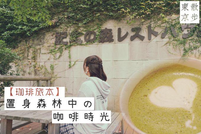 【散步東京 ✖ 珈琲旅本】茨城縣國營日立海濱公園|置身於森林中的「記念の森レストハウス」