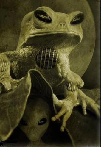 [Image: alienfrog.jpg]