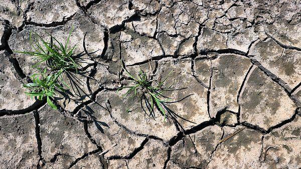 Klimaforscher schütteln den Kopf über Kurz-Aussagen