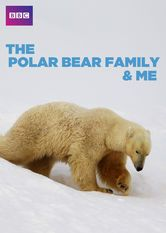 The Polar Bear Family and Me