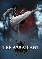 The Assailant