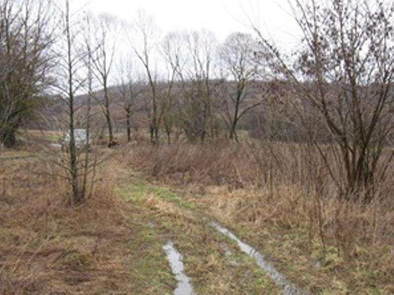 продам земельну ділянку в Рожнові