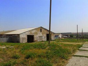 Коммерческая недвижимость, W-653368