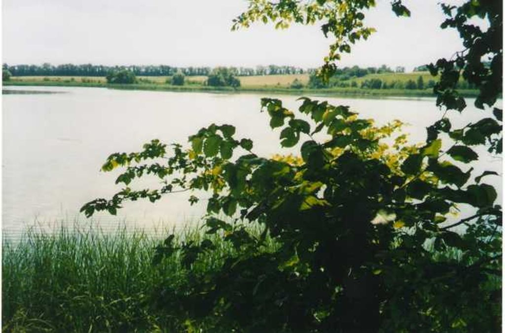 продам участок Черкассы, ул.Стеблев - Фото 5