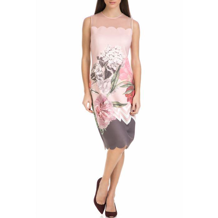 TED BAKER - Γυναικείο μίντι φόρεμα ARIONAH PALACE GARDENS SCALLOP ροζ με φλοράλ μοτίβο