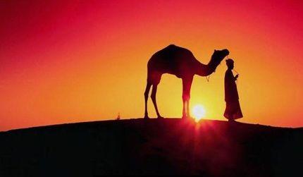 Marokko in Marrakech - MA - MA