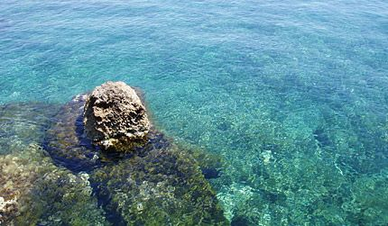 Cyprus in Paphos - CY - CY