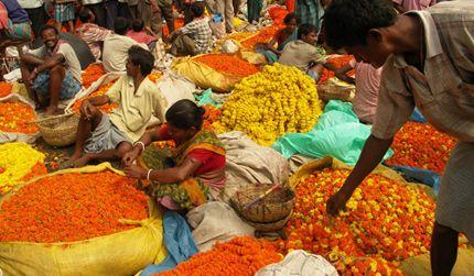 India in Calcutta - IN - IN