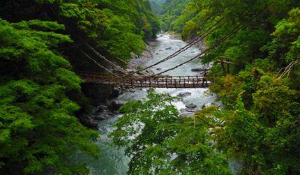 Japan in Tokushima - JP - JP