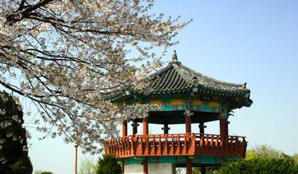 Zuid-Korea in Seoul - KR - KR