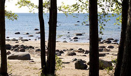 Finland in Kuopio - FI - FI