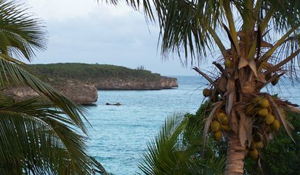 Bahamas in North-Eleuthera - BS - BS