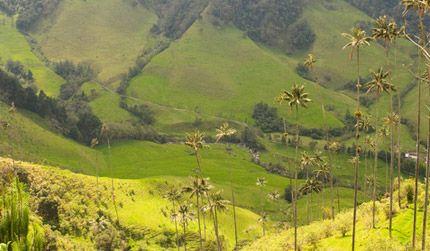 Colombia in Bucaramanga - CO - CO