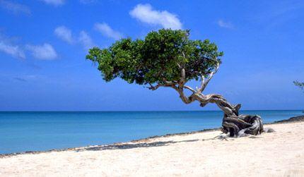 Nederlandse-Antillen in Sint-Maarten - AN - AN