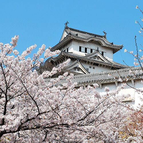Osaka in Osaka - JP - JP