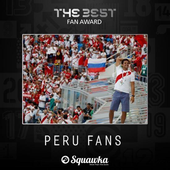 外国人「日本のファンが獲得すべきだった」FIFAファン賞、ペルーが受賞で賛否両論!【海外の反応】の代表サムネイル