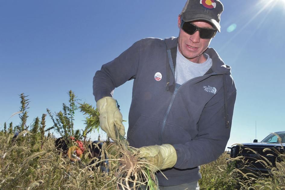 House passes third hemp bill with changes sought by gov.