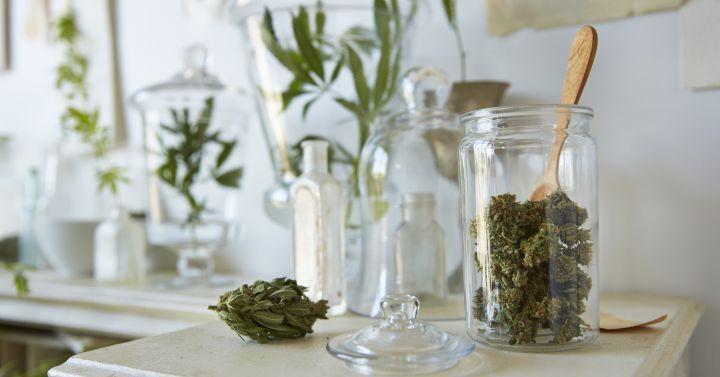 Clubs de cannabis: ¿legales o ilegales?