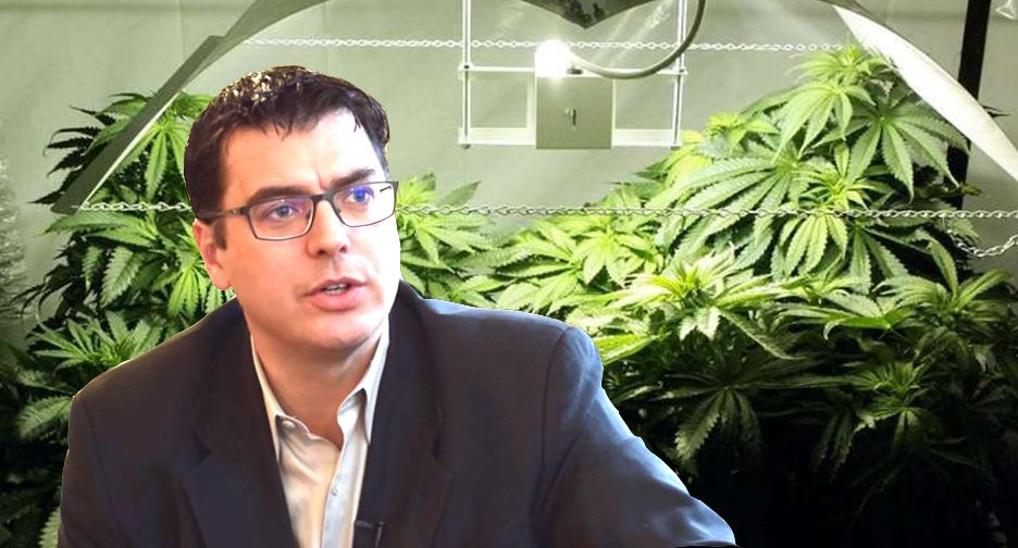 Tousaw's Thoughts on Health Canada's Response To Allard on Aug 24 - Cannabis Digest