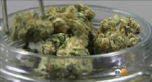 Contaminated medical marijuana believed to have killed cancer patient